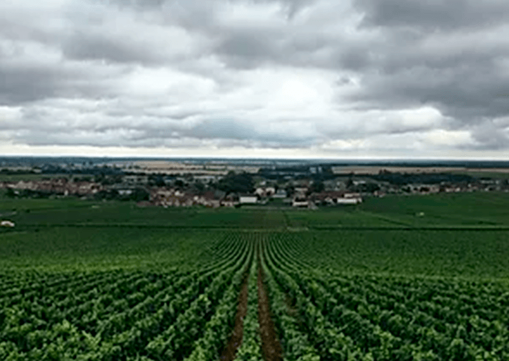 5 motivos para visitar a Borgonha