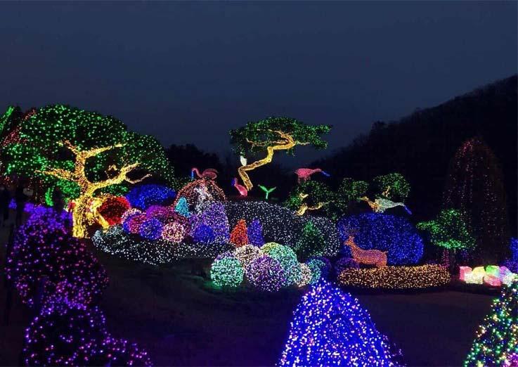 Um paraíso fora de Seul! Uma viagem fantástica ao jardim de luz e cor.