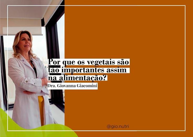 Por que os vegetais são tão importantes assim na alimentação?
