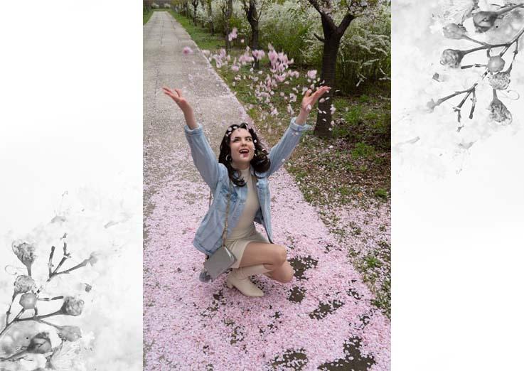 A primavera Cor de Rosa da Coreia do Sul